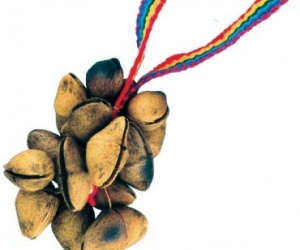 Cha-cha ořechy