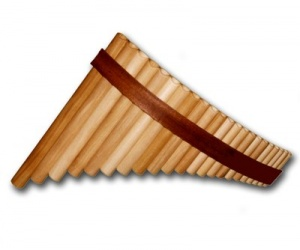 Panova flétna FP-22