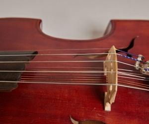 Sférická viola (kvinton)