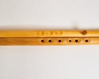 Dvojité flétny