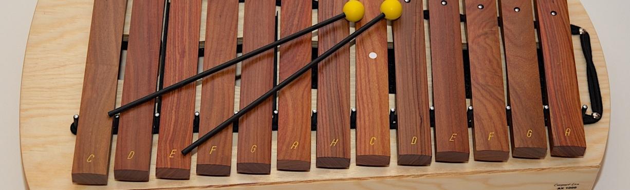 Xylofony Studio 49