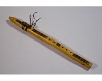 Přírodní indiánské flétny