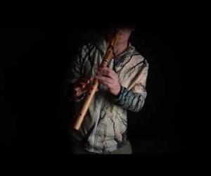 Flétna Stellar Premiere G - třešeň