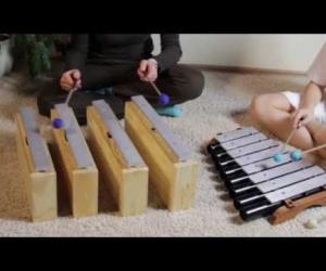 Video ukázka Souznění metalofonu a basových rezonátorů